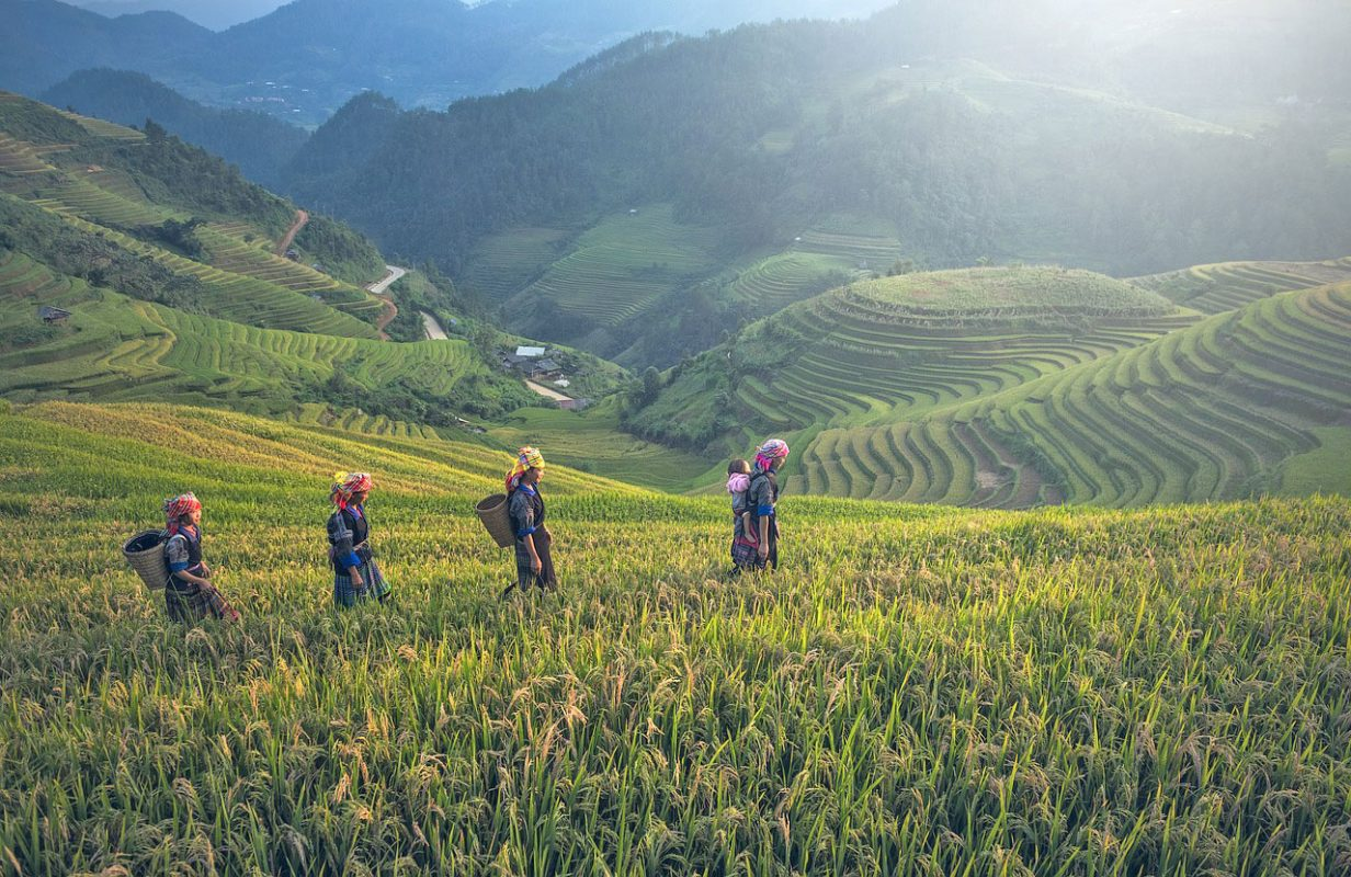 Tours-Vietnam-best-Intro-Tours-Local-Day-Trips-Things-To-Do-in-Vietnam-sightseeing-tours-walking-tours-food-tours-in-Vietnam-Saigon-Ho-Chi-Minh-Tuy Hoa Phu Yen Tours-Off the beaten track IntroTrip
